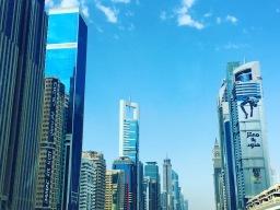 Dude In Dubai
