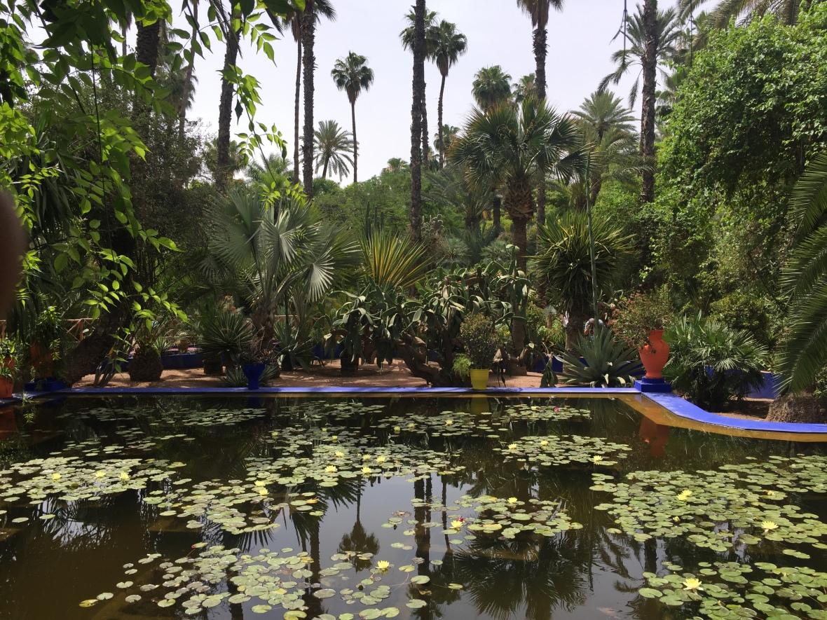 Jardin Morocco